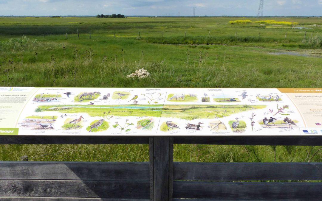 Nouvelle signalétique d'interprétation à la réserve naturelle du marais de la Vacherie