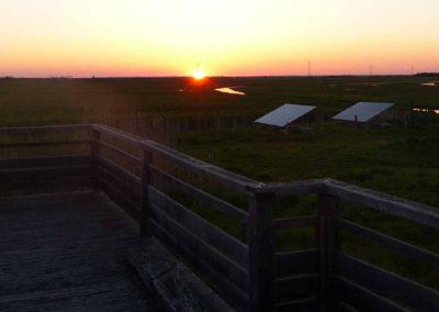Couché de soleil sur le marais