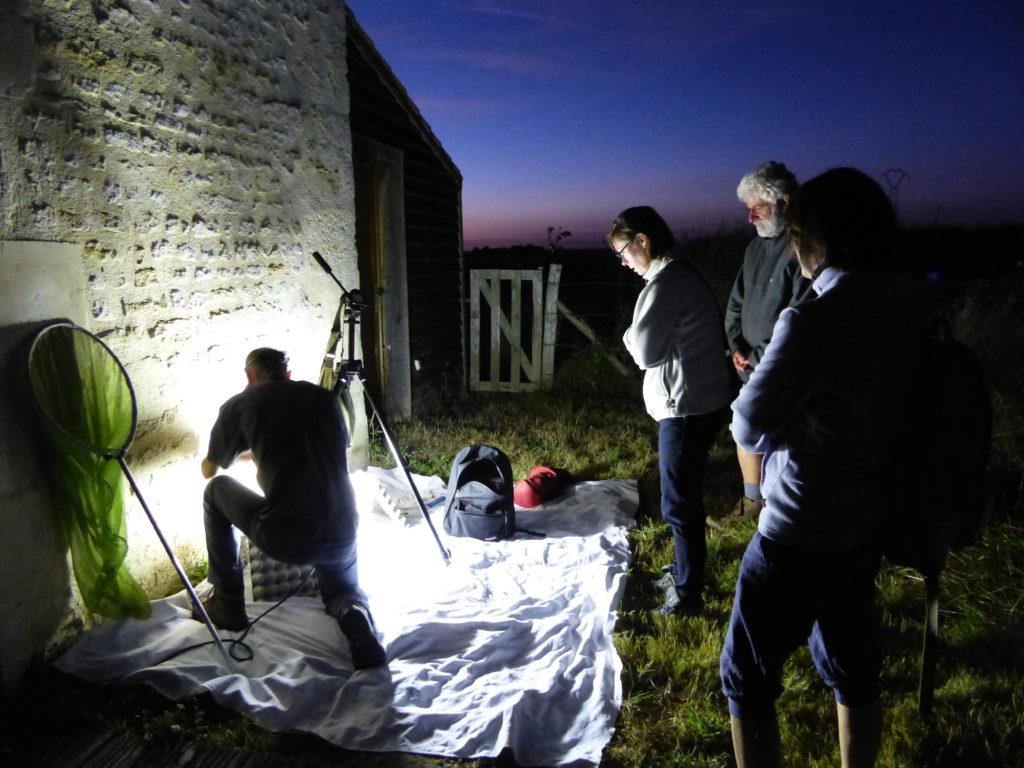 Animation papillons de nuit sur la Réserve du marais de la Vacherie